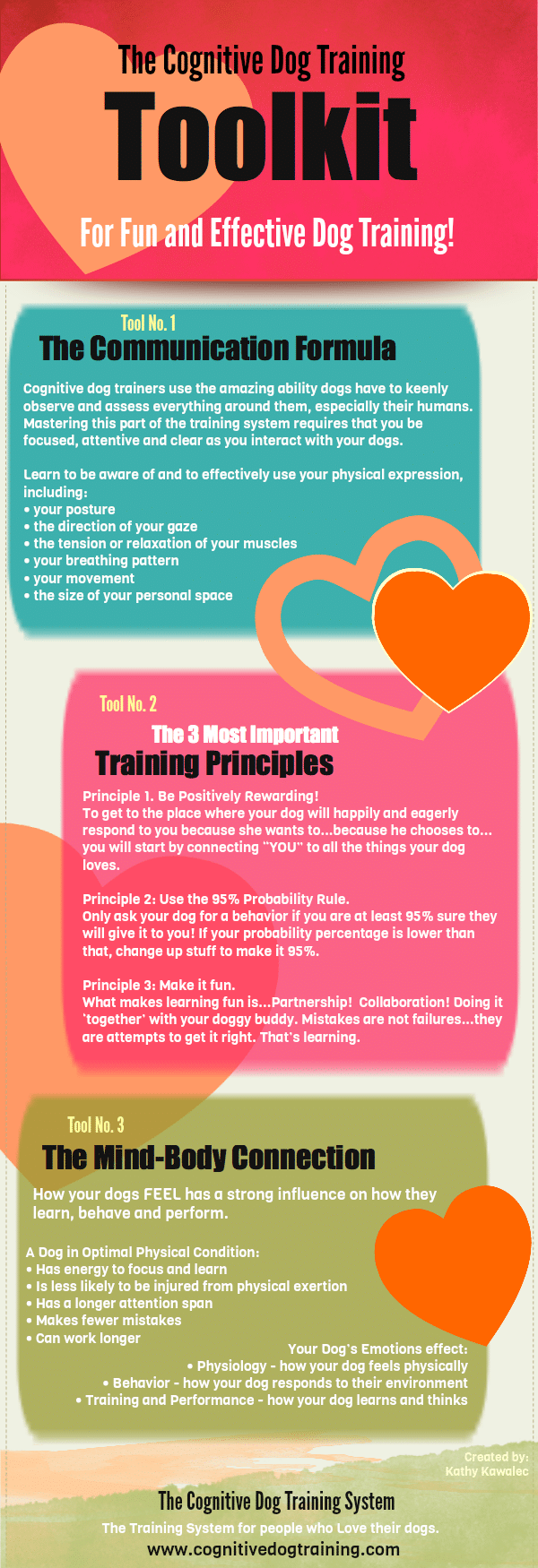 Cognitive Dog Training Infographic