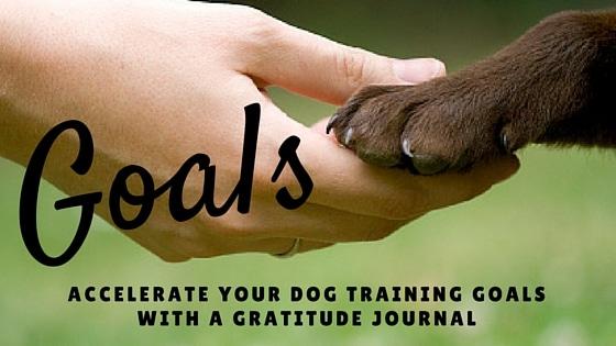 Gratitude accelerate your goals