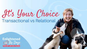 It's Your Choice - Transactional vs Relational