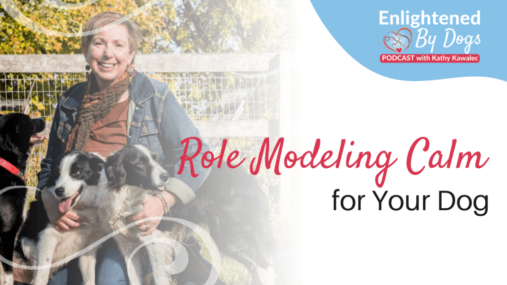 Role Modeling Calm for Your Dog