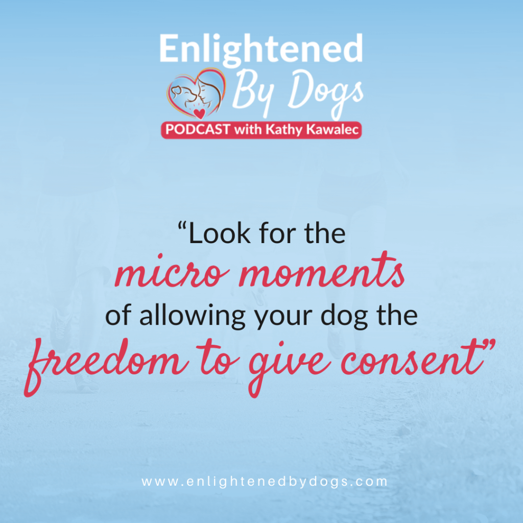 How Consent Empowerment Builds Trust with Our Dogs