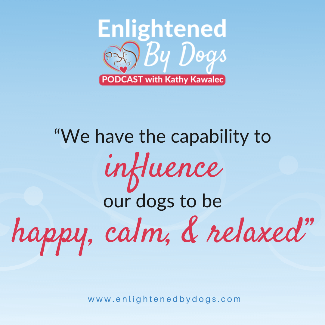 The Power of Intentional Breathing to Calm You and Your Dog
