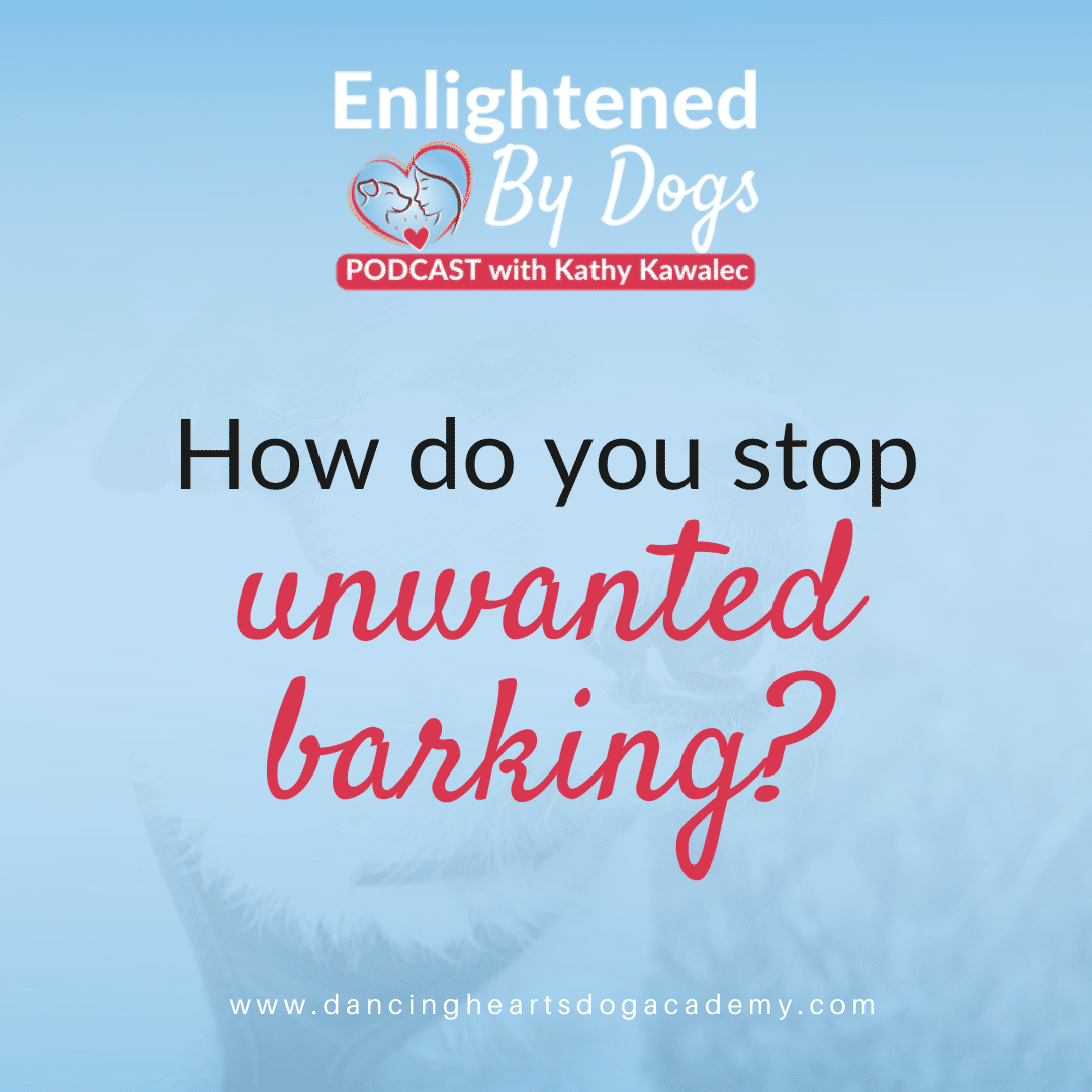 How to Rehab Unwanted Barking