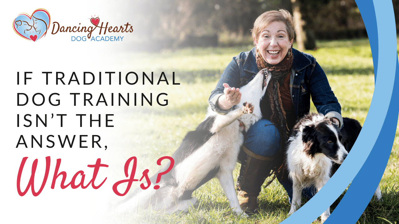 If Traditional Dog Training Isn't The Answer, What Is?