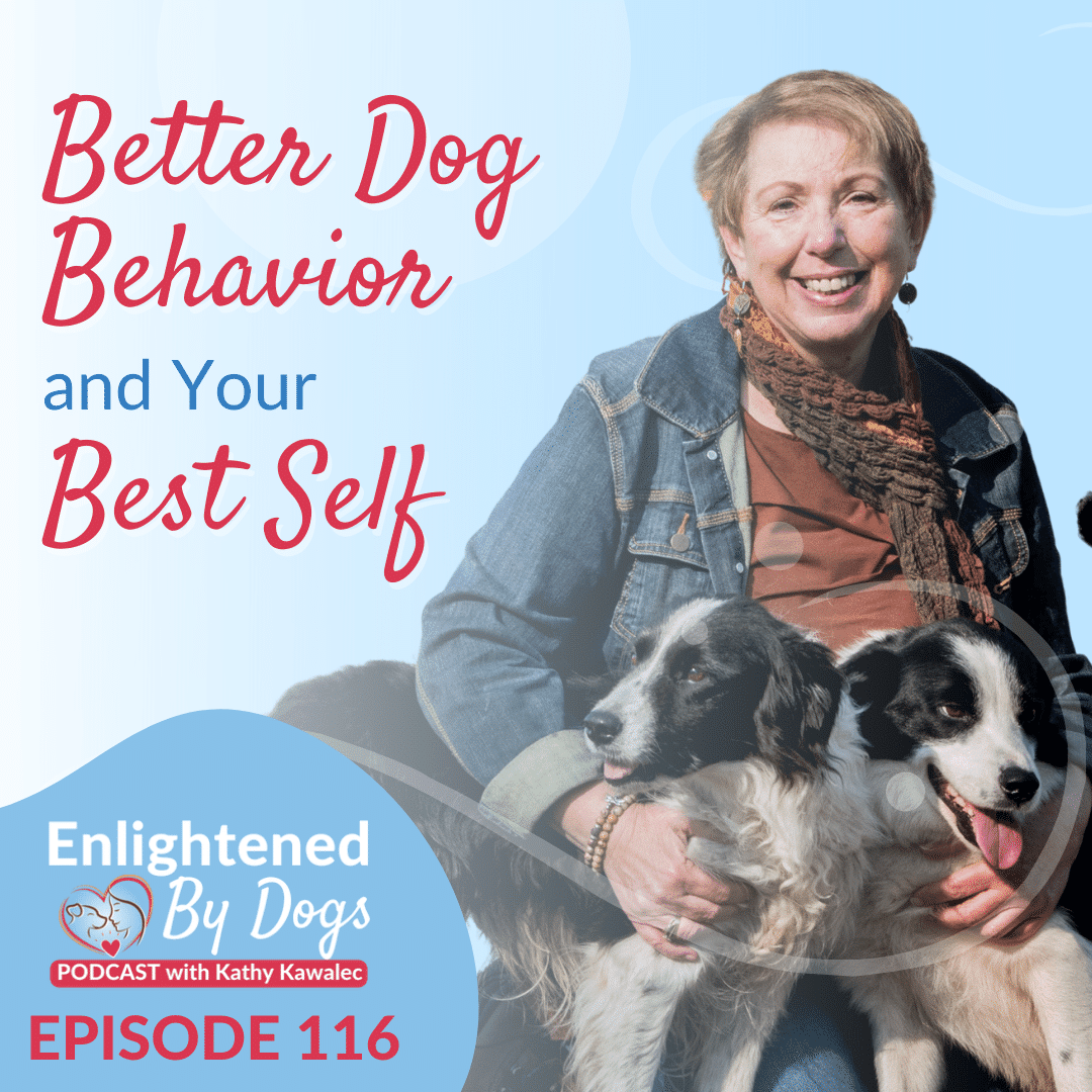 Better Dog Behavior and Your Best Self
