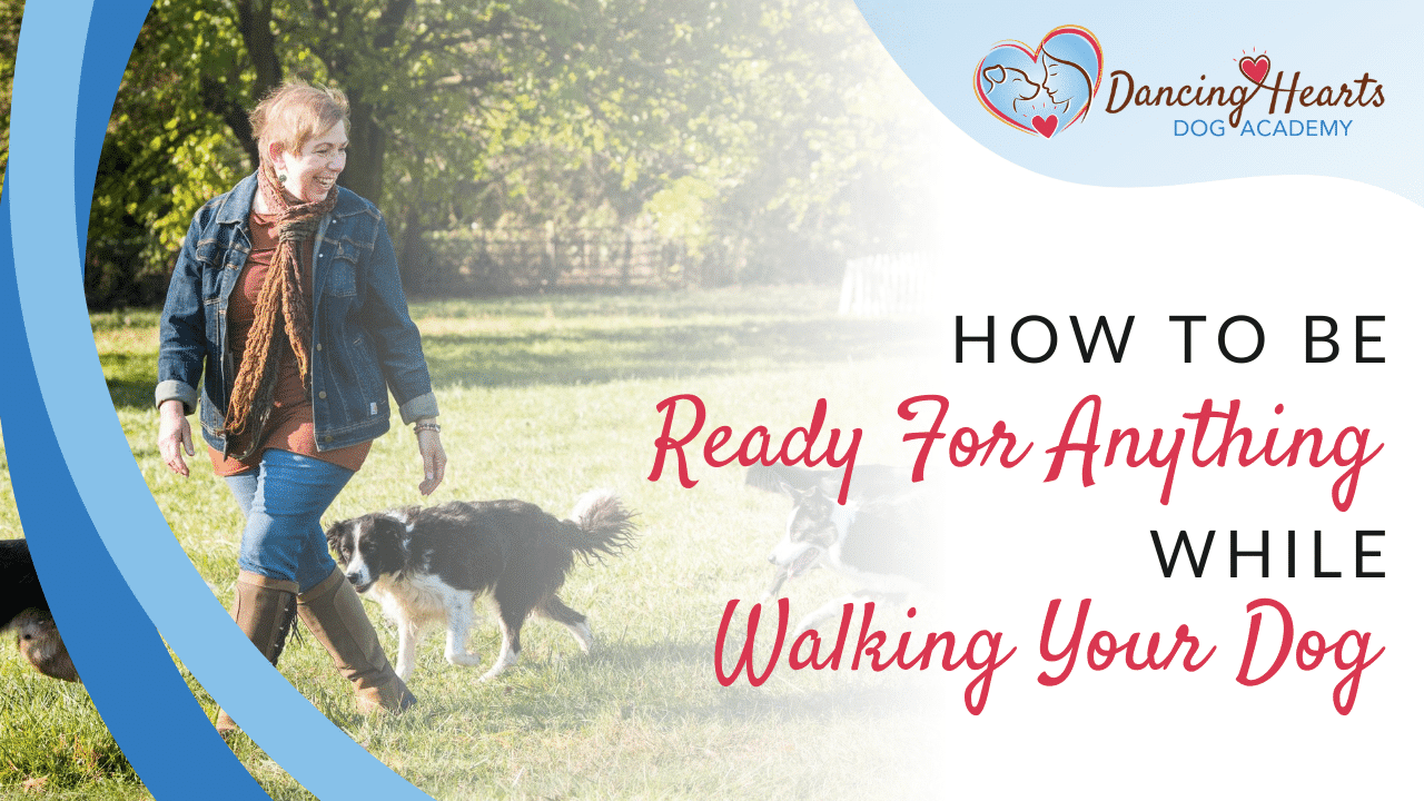 How to Be Ready For Anything While Walking Your Dog