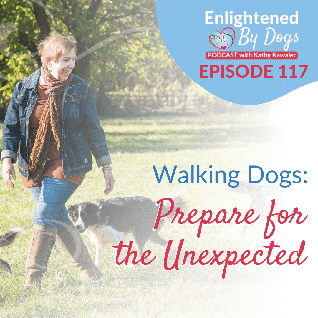 EBD117 Walking Dogs: Prepare for the Unexpected