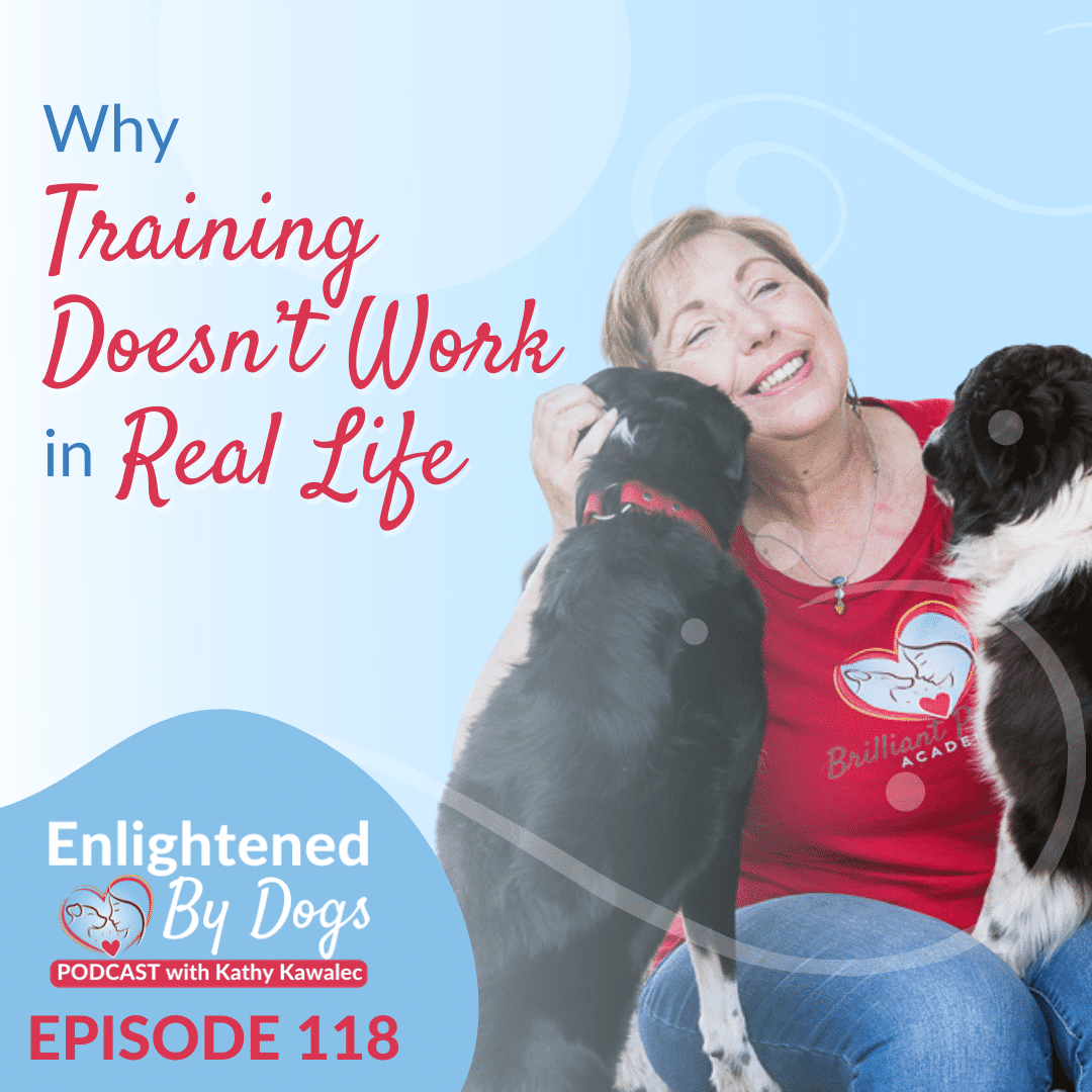 Why Training Doesn't Work in Real Life
