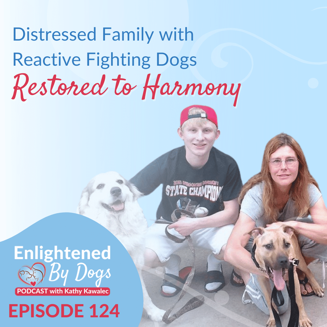 EBD124 Distressed Family with Reactive Fighting Dogs Restored to Harmony