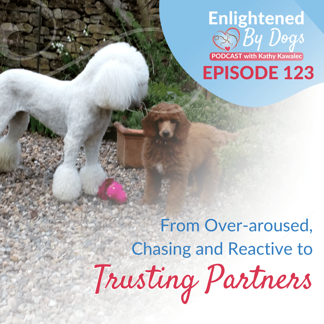 EBD123 From Over-aroused, Chasing and Reactive to Trusting Partners