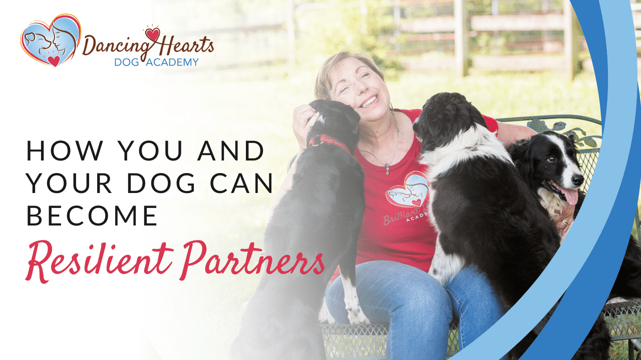 How You and Your Dog Can Become Resilient Partners