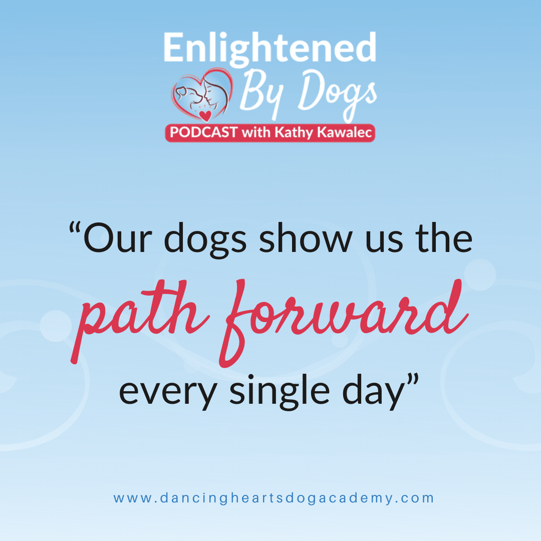 Our dogs show us the path forward every single day