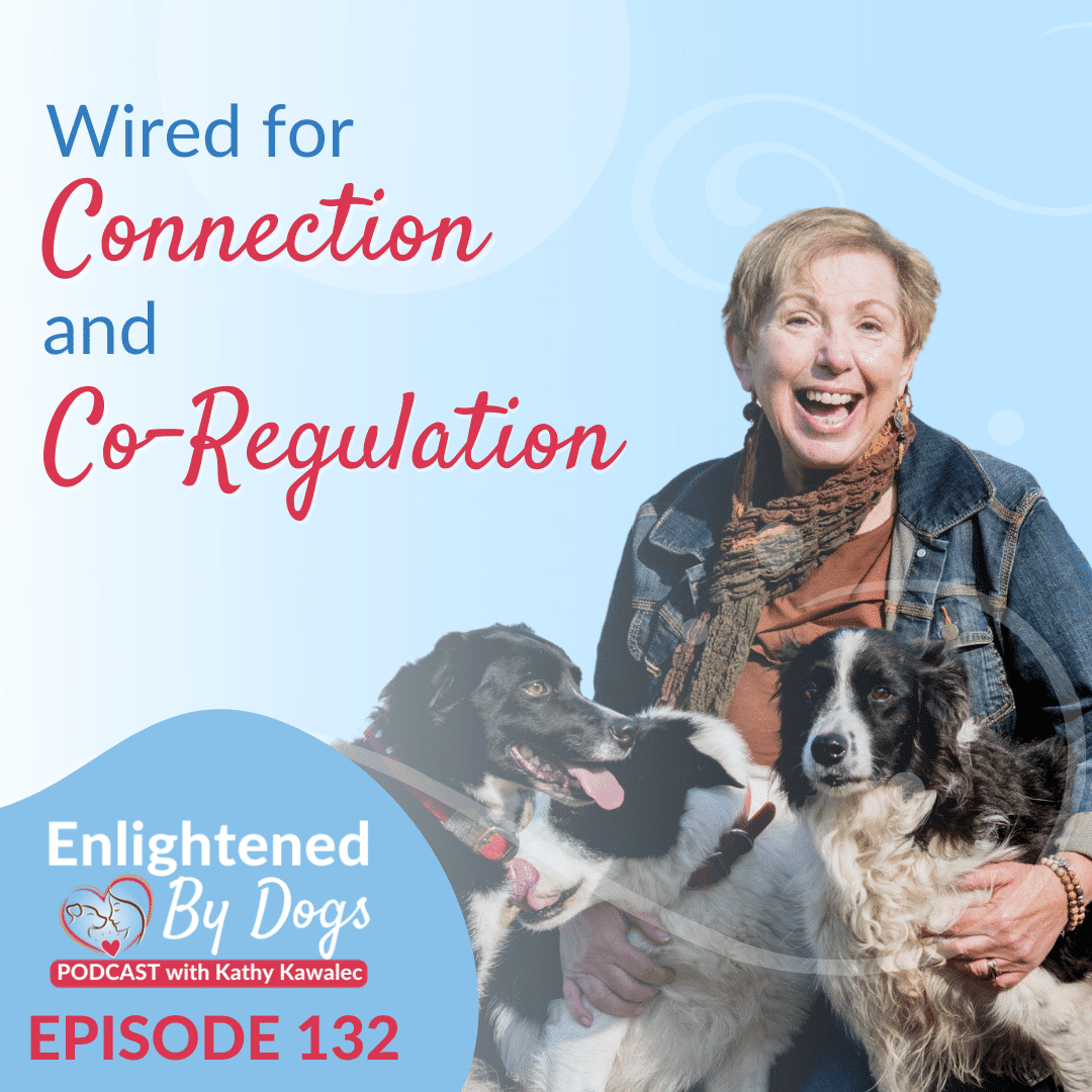 Wired for Connection and Co-Regulation