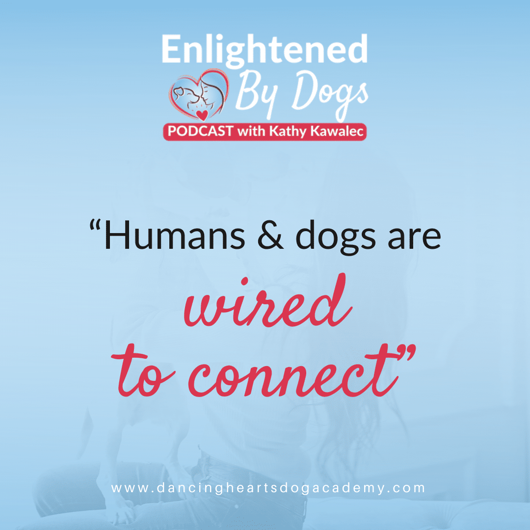 """Humans and dogs are wired to connect"""