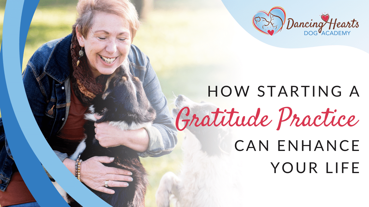 How Starting a Gratitude Practice Can Enhance Your Life