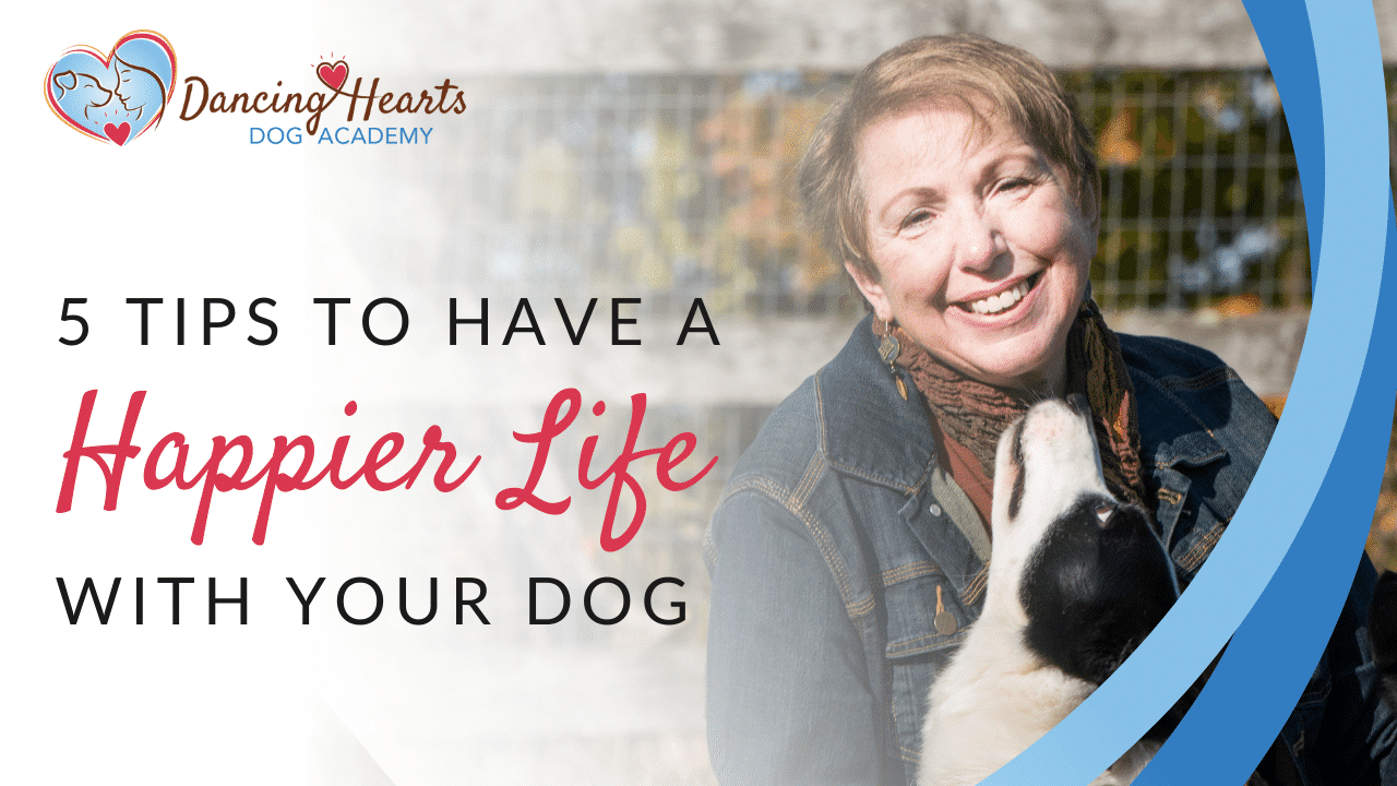5 Tips to Have a Happier Life with Your Dog