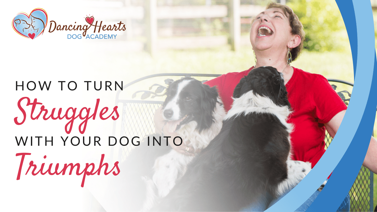 How to Turn Struggles with Your Dog into Triumphs
