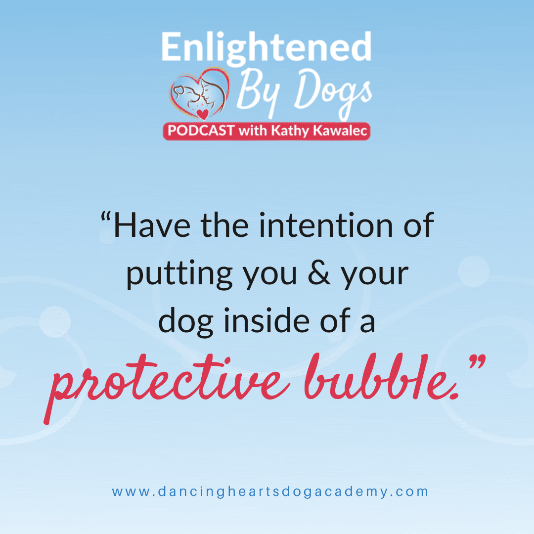 """Have the intention of putting you & your dog inside of a protective bubble."""