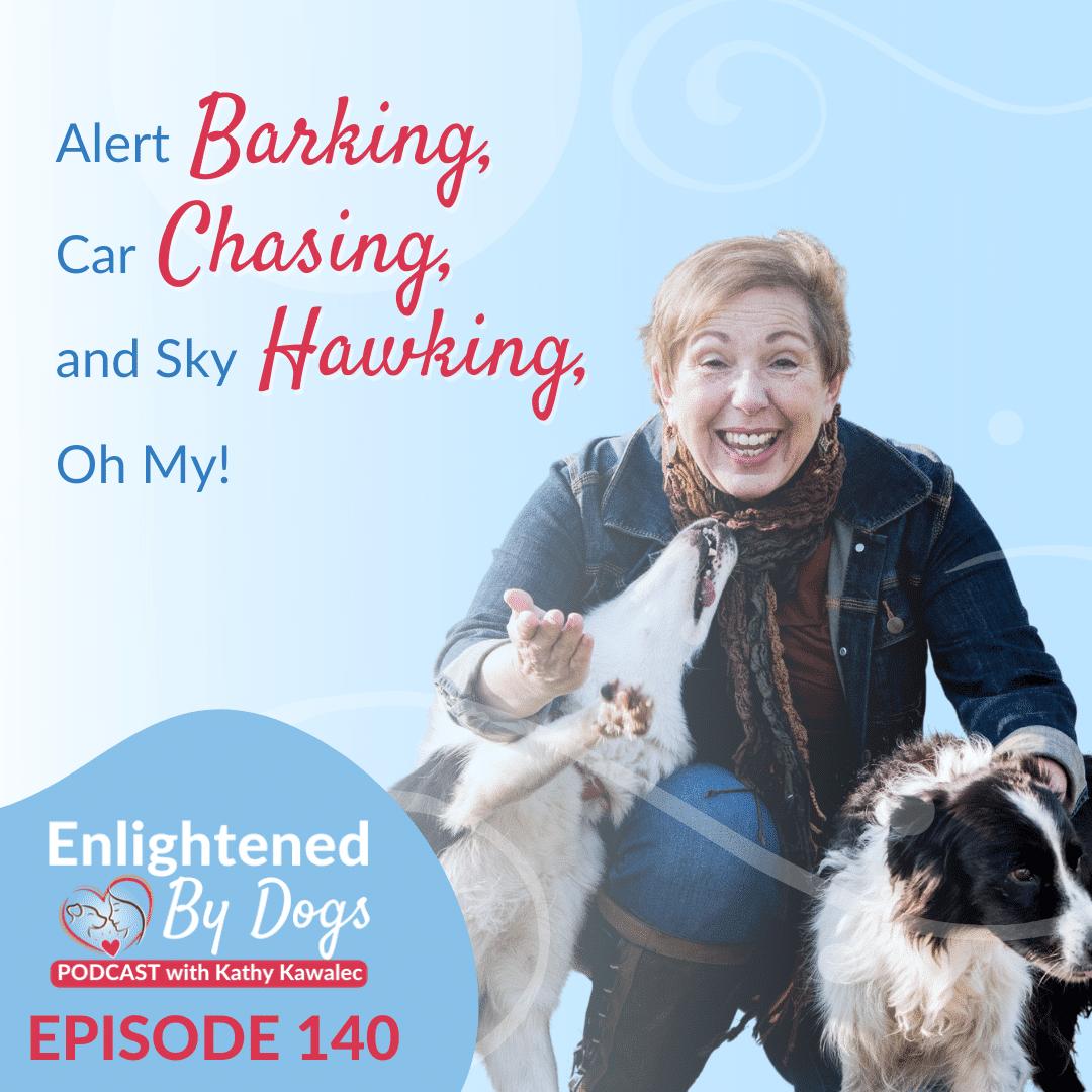 Alert Barking, Car Chasing, and Sky Hawking, Oh My!