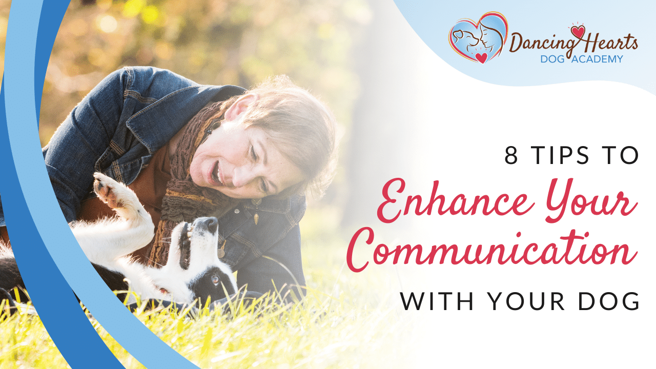 8 Tips to Enhance Your Communication with Your Dog