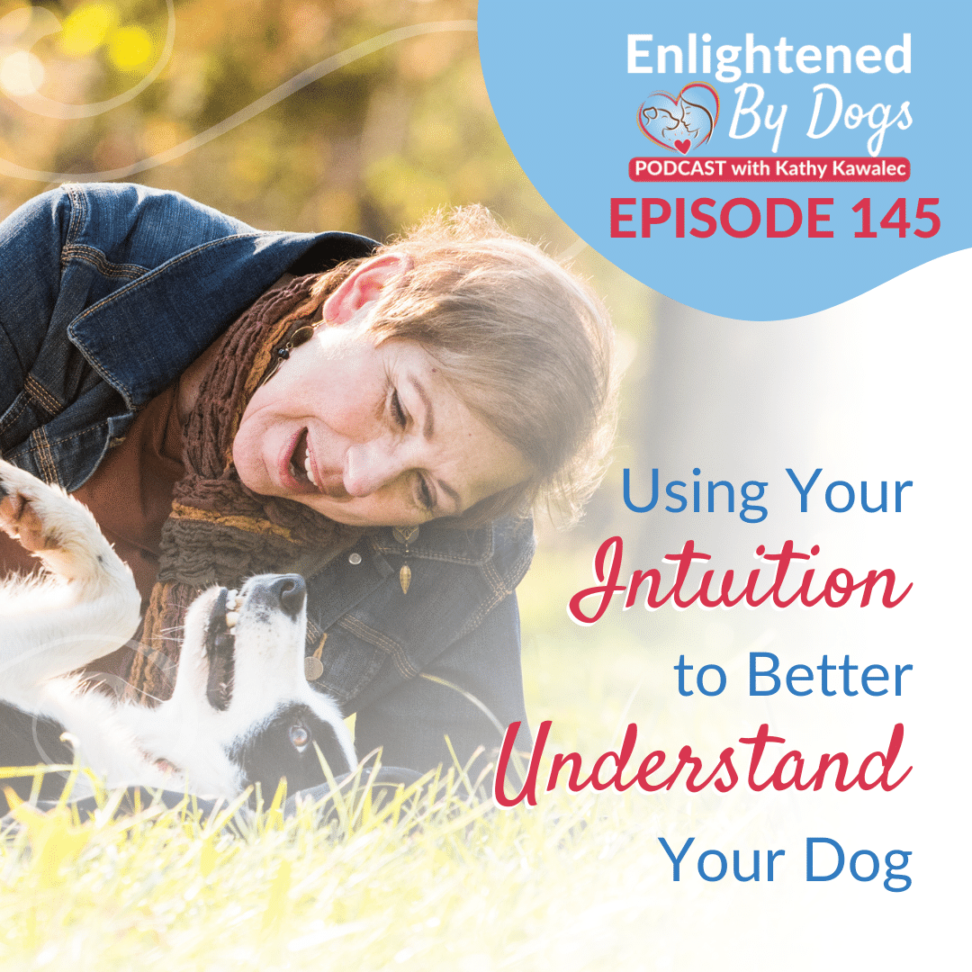 Using Your Intuition to Better Understand Your Dog