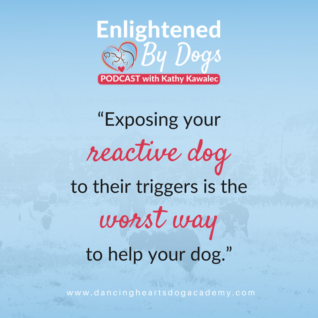 """""""Exposing your reactive dog to their triggers is the worst way to help your dog."""""""