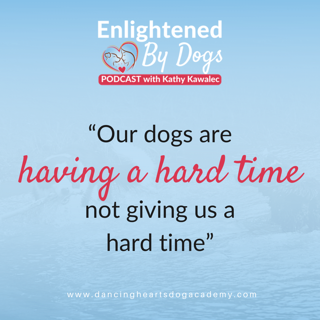 """Quote: """"Our dogs are having a hard time not giving us a hard time"""""""