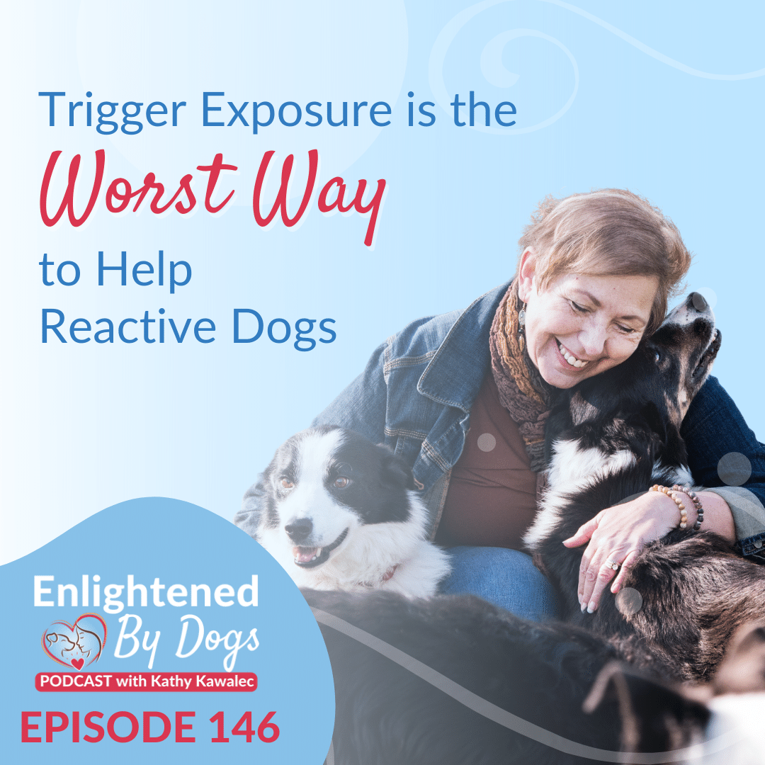 Trigger Exposure is the Worst Way to Help Reactive Dogs