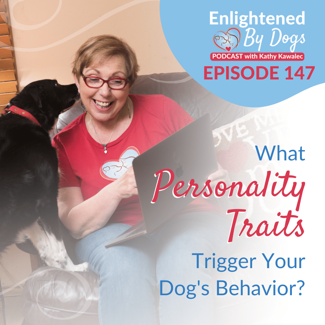 EBD147 What Personality Traits Trigger Your Dog's Behavior?