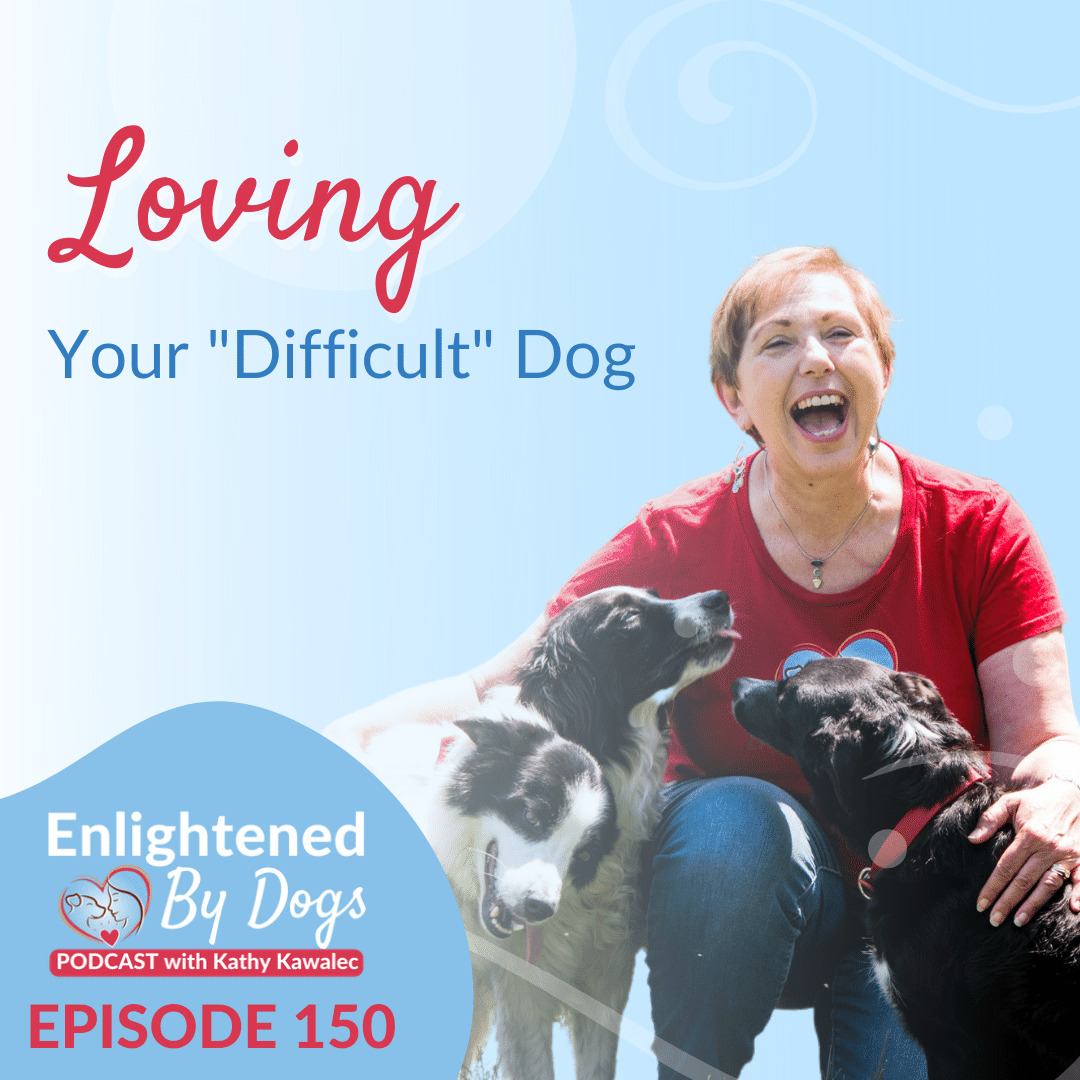 """Loving Your """"Difficult"""" Dog"""