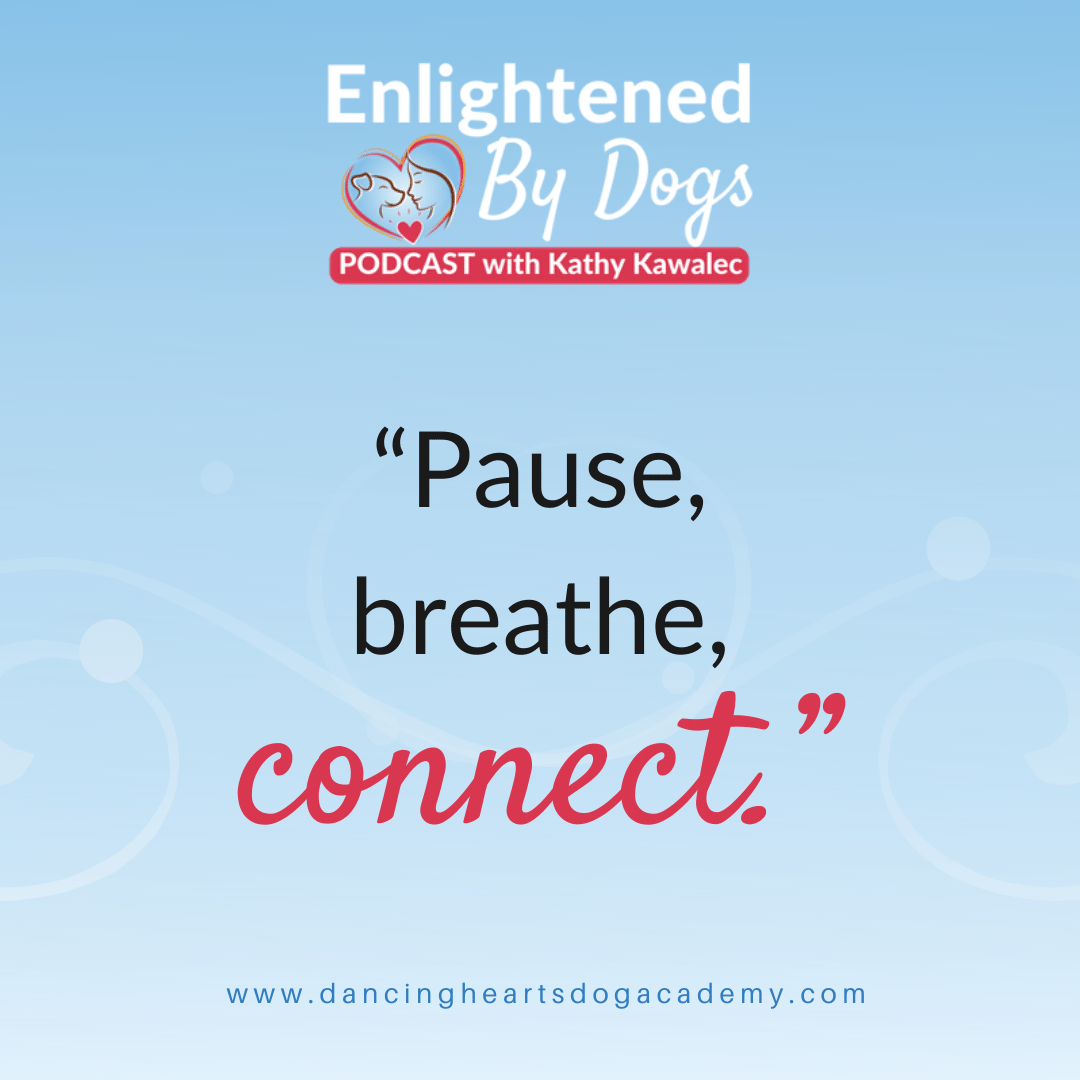 """""""Pause, breathe, connect."""""""
