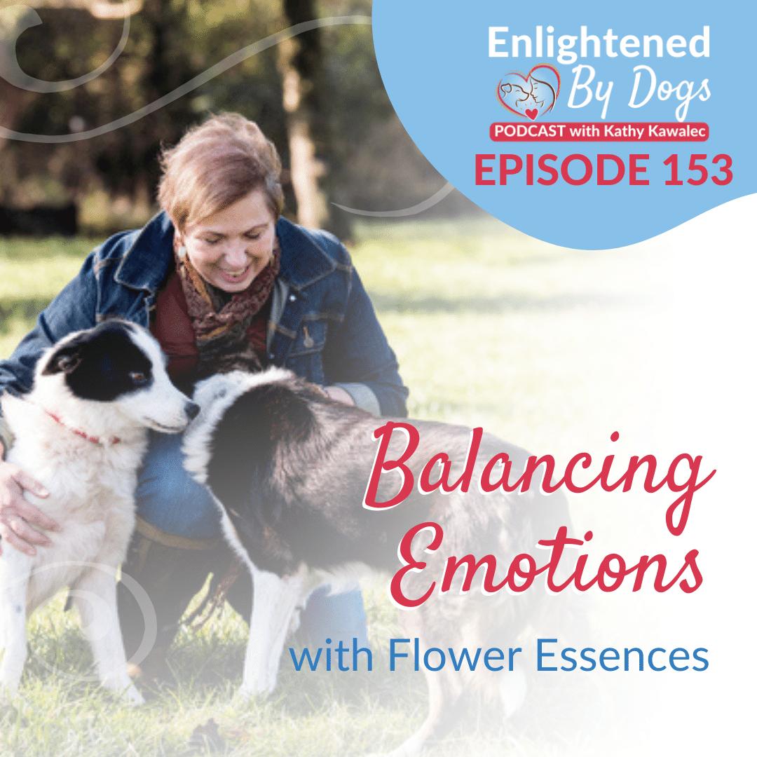EBD153 Balancing Emotions with Flower Essences