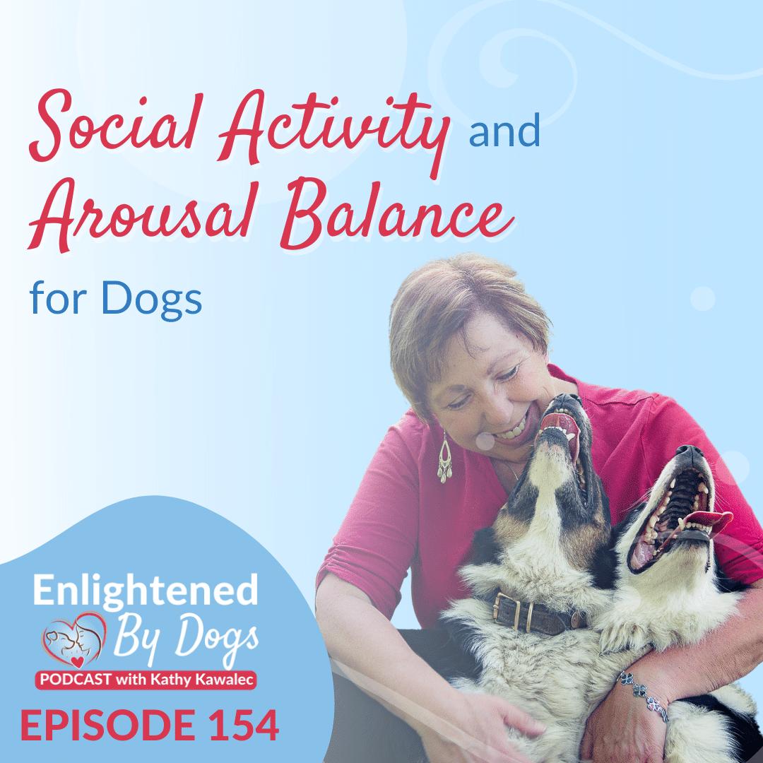 EBD154 Social Activity and Arousal Balance for Dogs