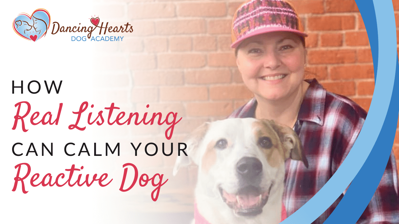 How Real Listening Can Calm Your Reactive Dog