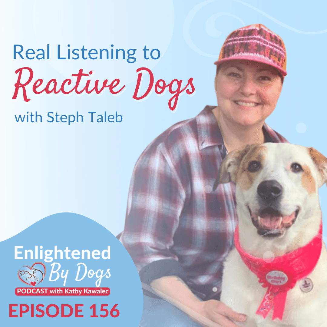 EBD156 Real Listening to Reactive Dogs with Steph Taleb