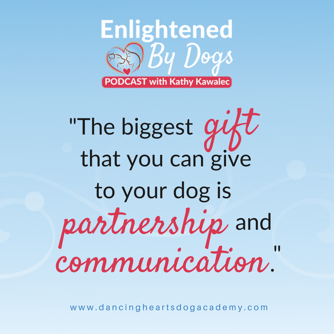 The biggest gift you can give to your dog is partnership and communication.