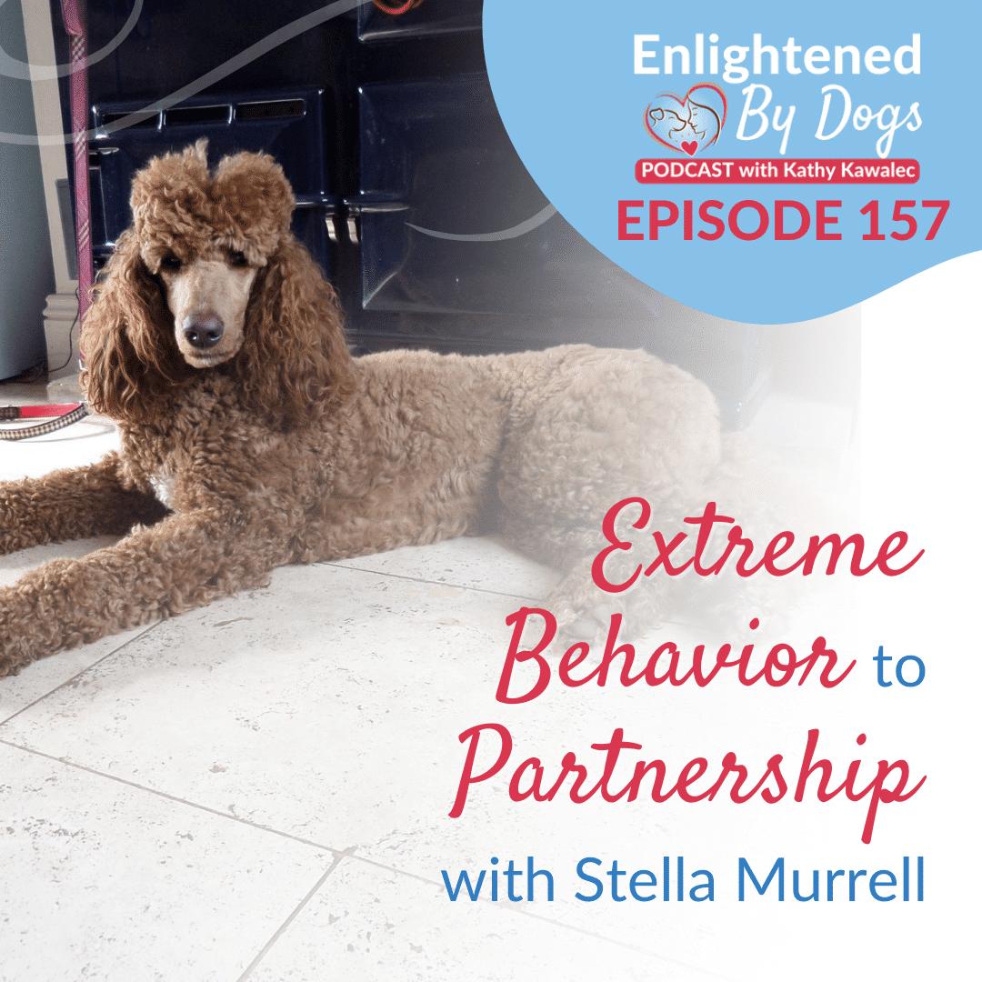 EBD157 Extreme Behavior to Partnership with Stella Murrell