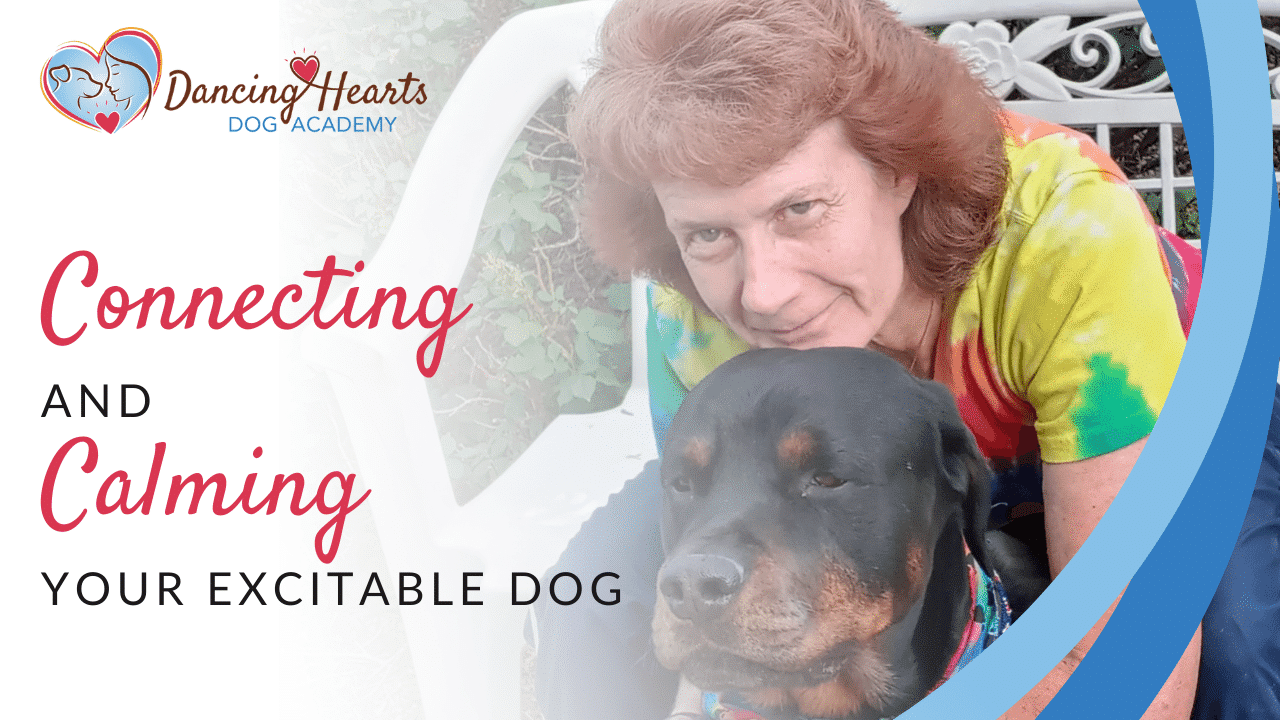 Connecting and Calming Your Excitable Dog