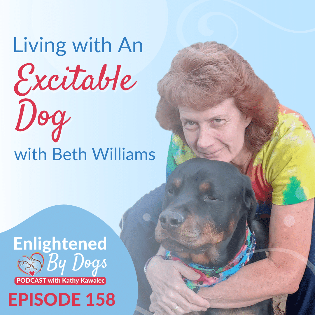 EBD158 Living with An Excitable Dog with Beth Williams