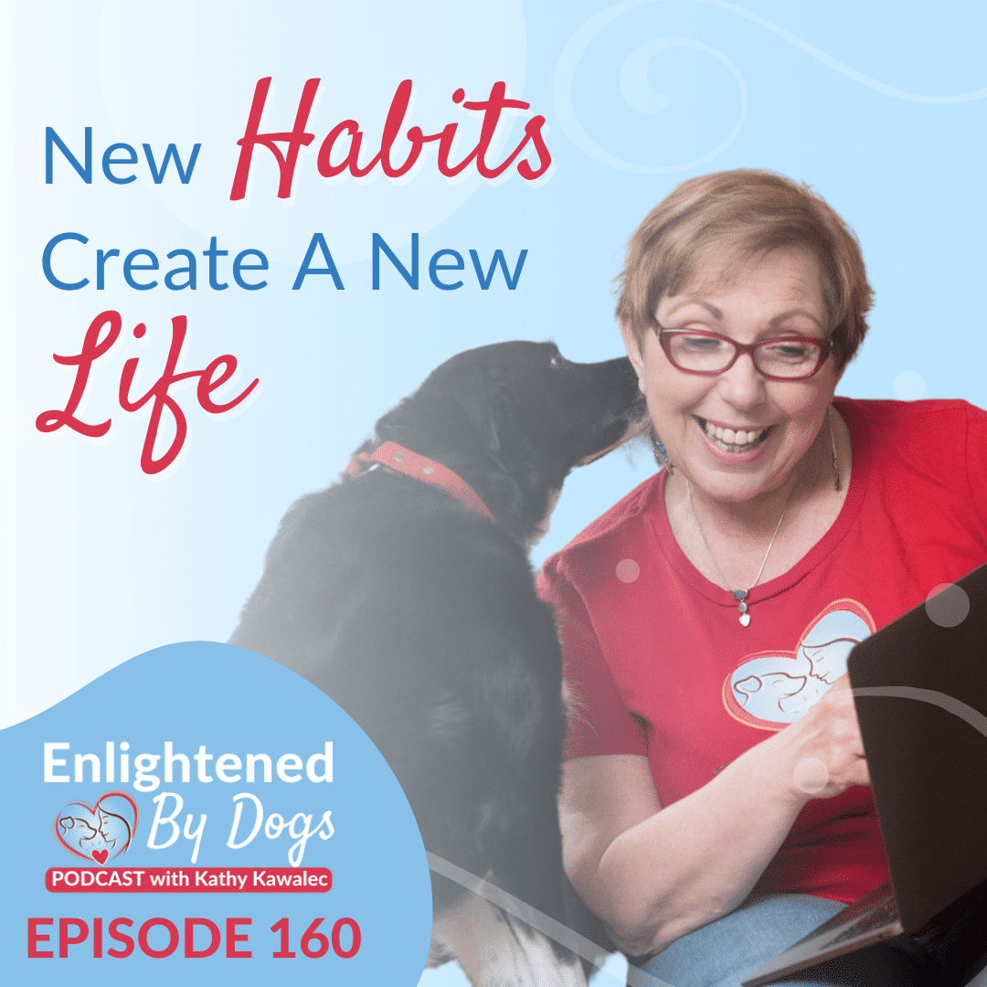 EBD160 New Habits Create A New Life