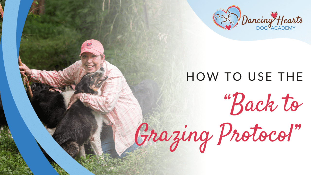 """How to Use the """"Back to Grazing Protocol"""""""
