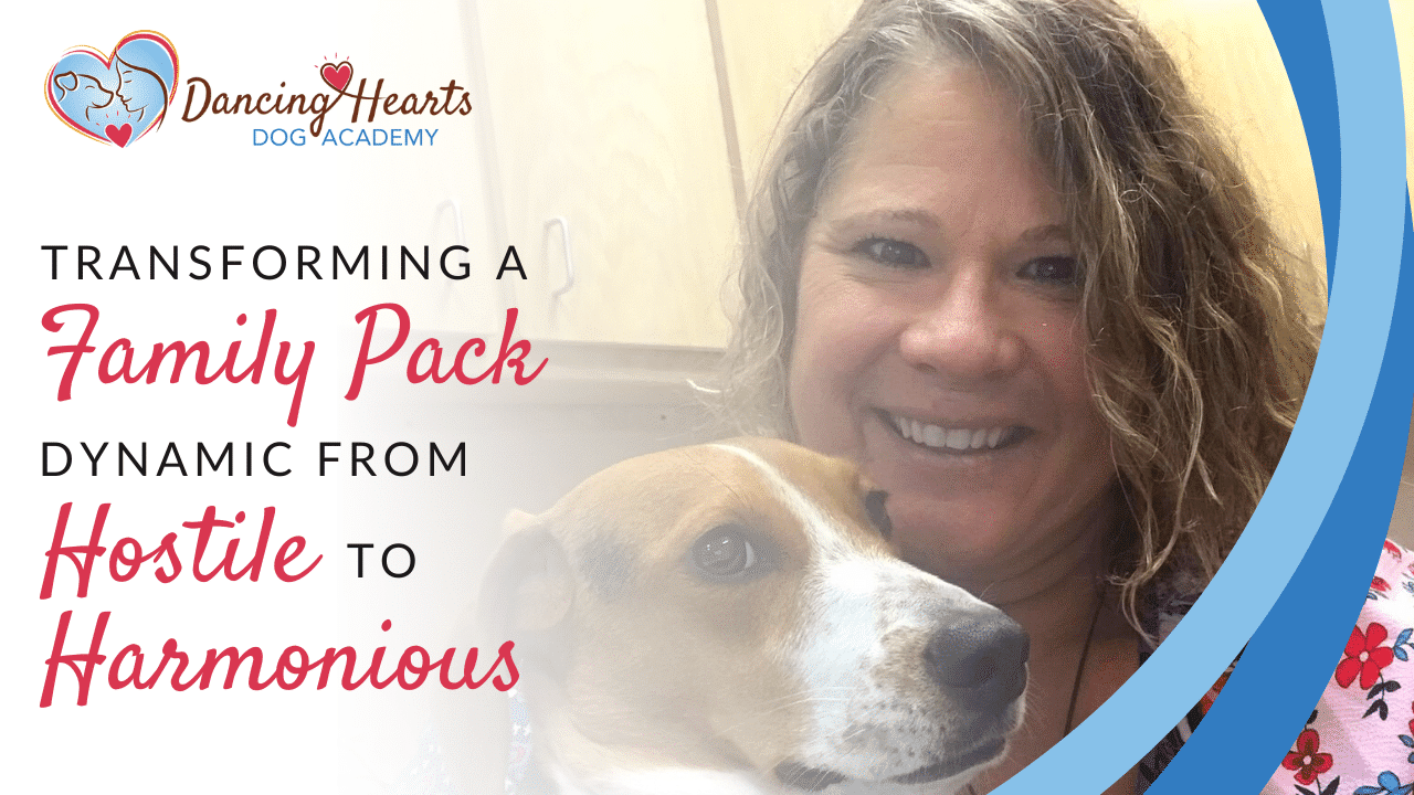 Transforming a Family Pack Dynamic from Hostile to Harmonious