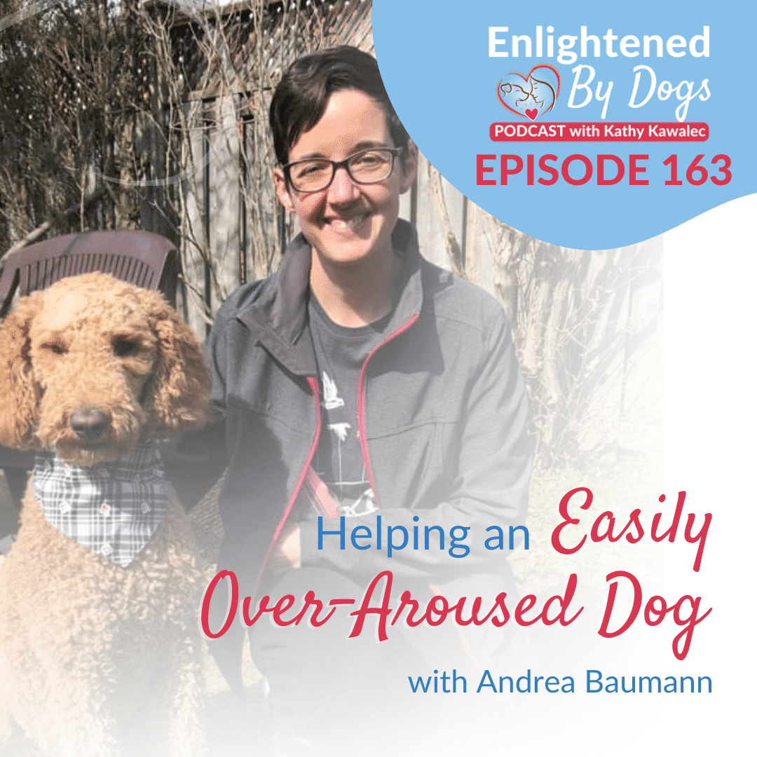 EBD163 Helping an Easily Over-Aroused Dog with Andrea Baumann