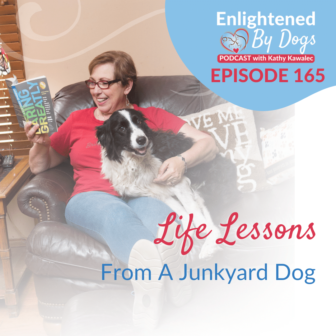 EBD165 Life Lessons From A Junkyard Dog