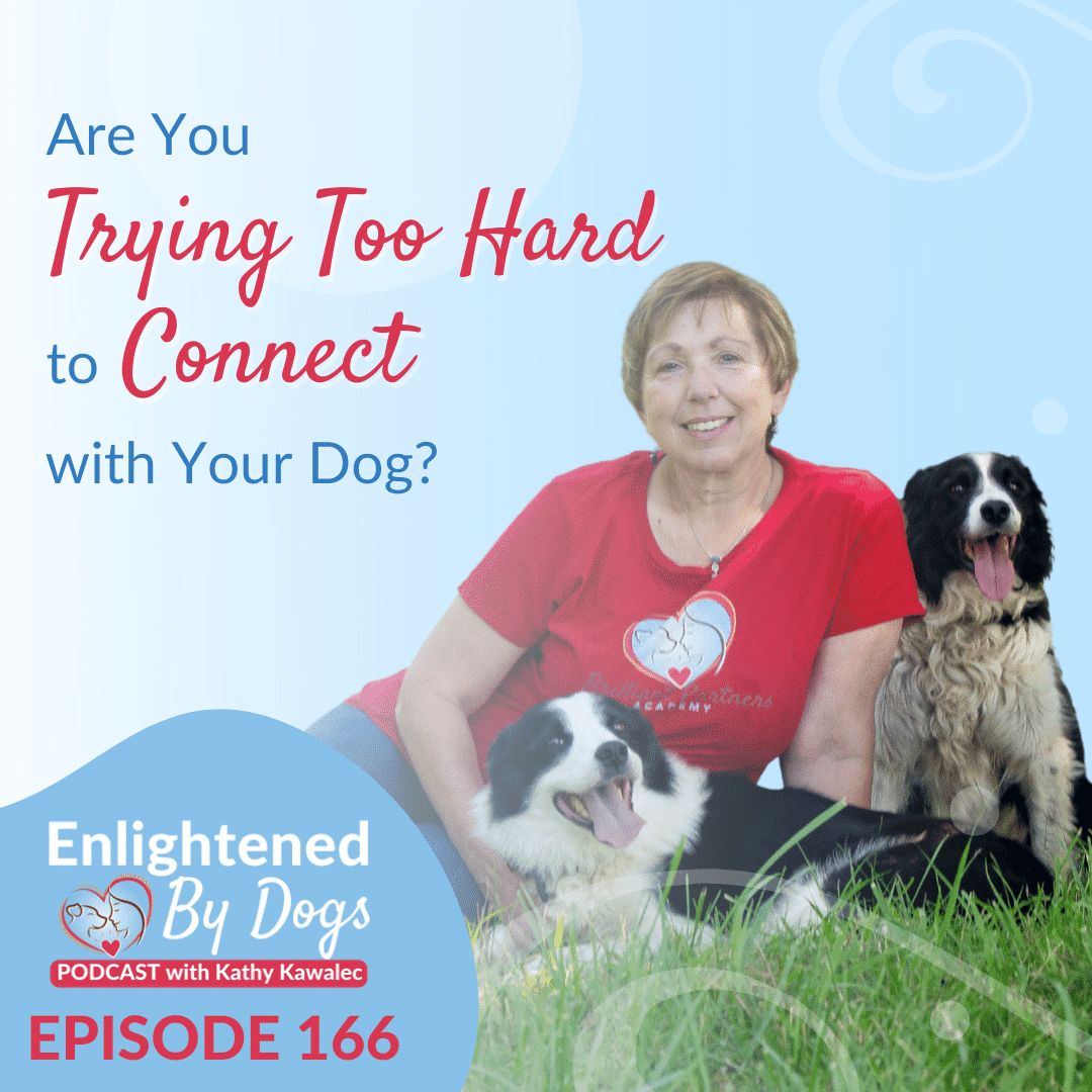 EBD166 Are You Trying Too Hard to Connect with Your Dog?