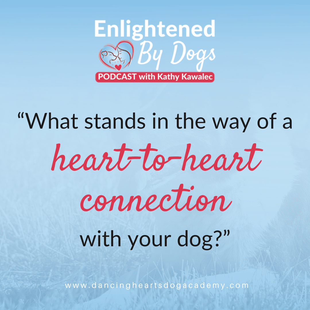 How to Have a Real Heart-to-Heart Connection with Your Dog