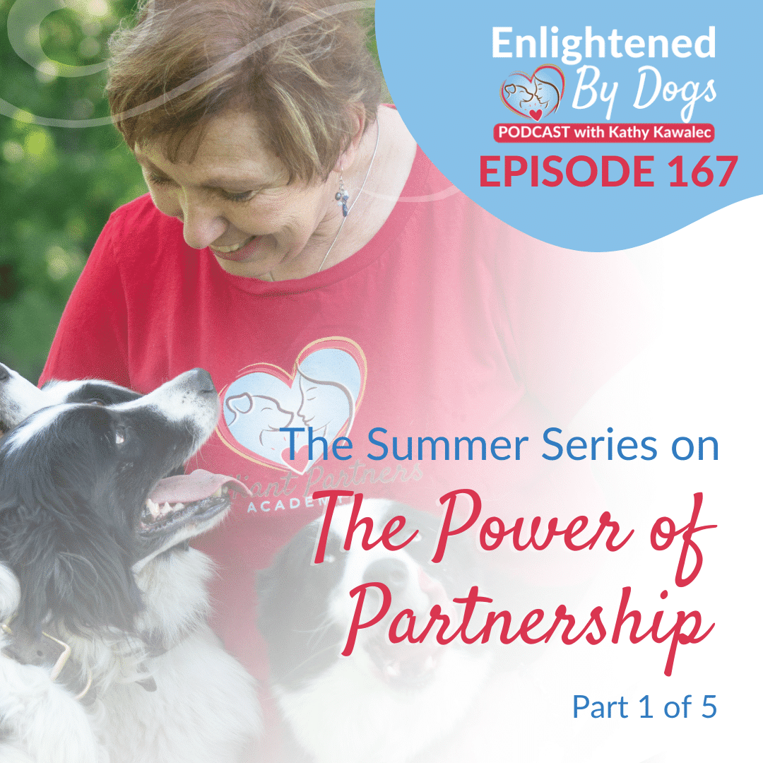 EBD167 The Summer Series on The Power of Partnership - Part 1 of 5