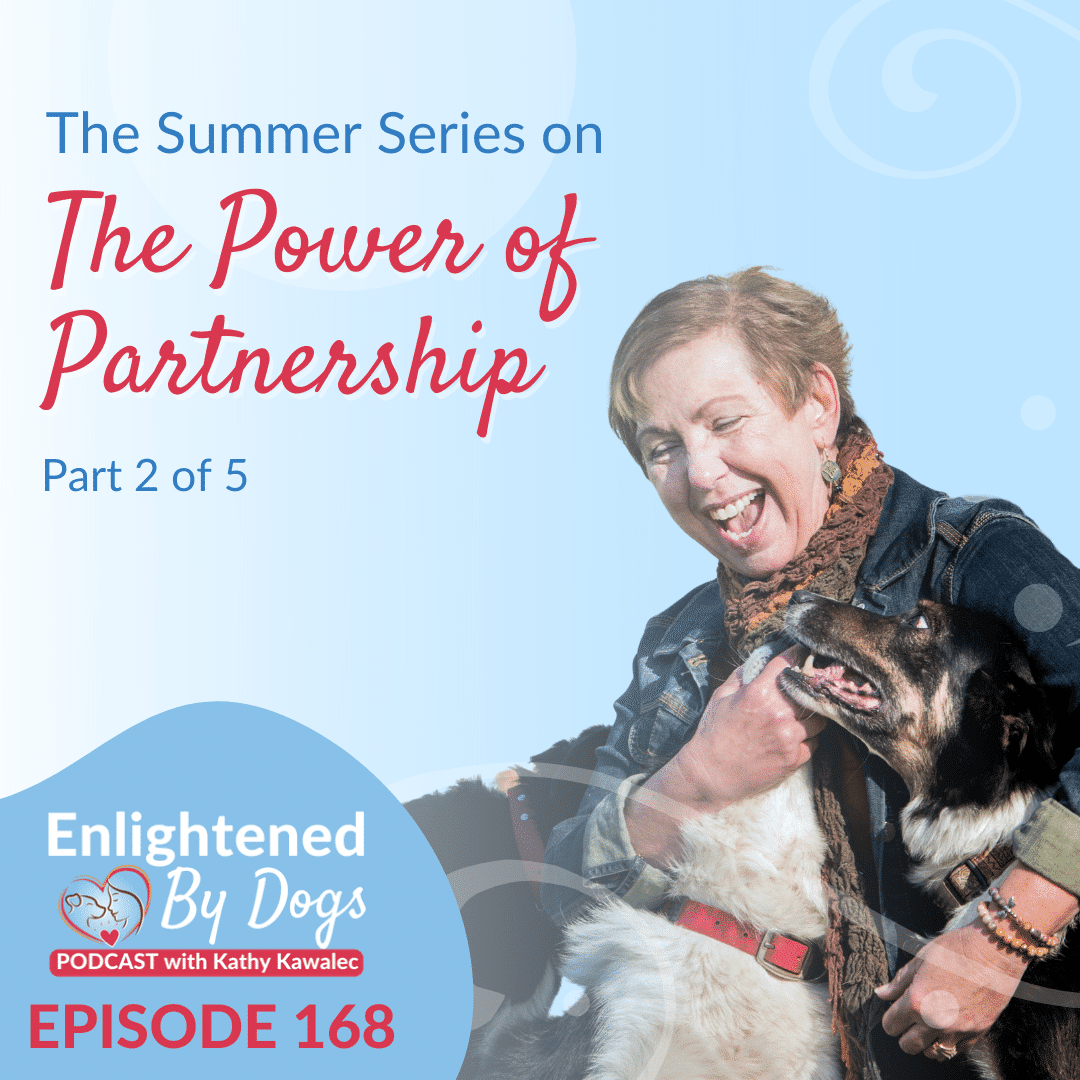 The Summer Series on The Power of Partnership - Part 2 of 5