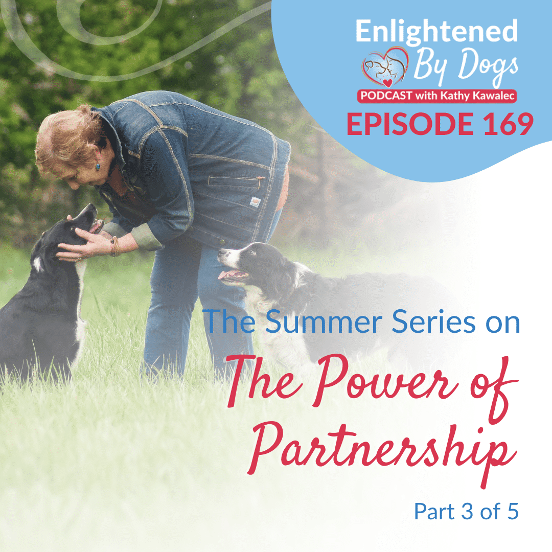 The Summer Series on The Power of Partnership - Part 3 of 5