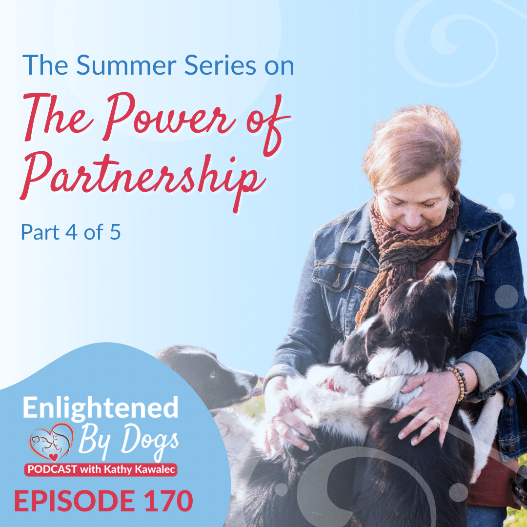 The Summer Series on The Power of Partnership Part 4 of 5